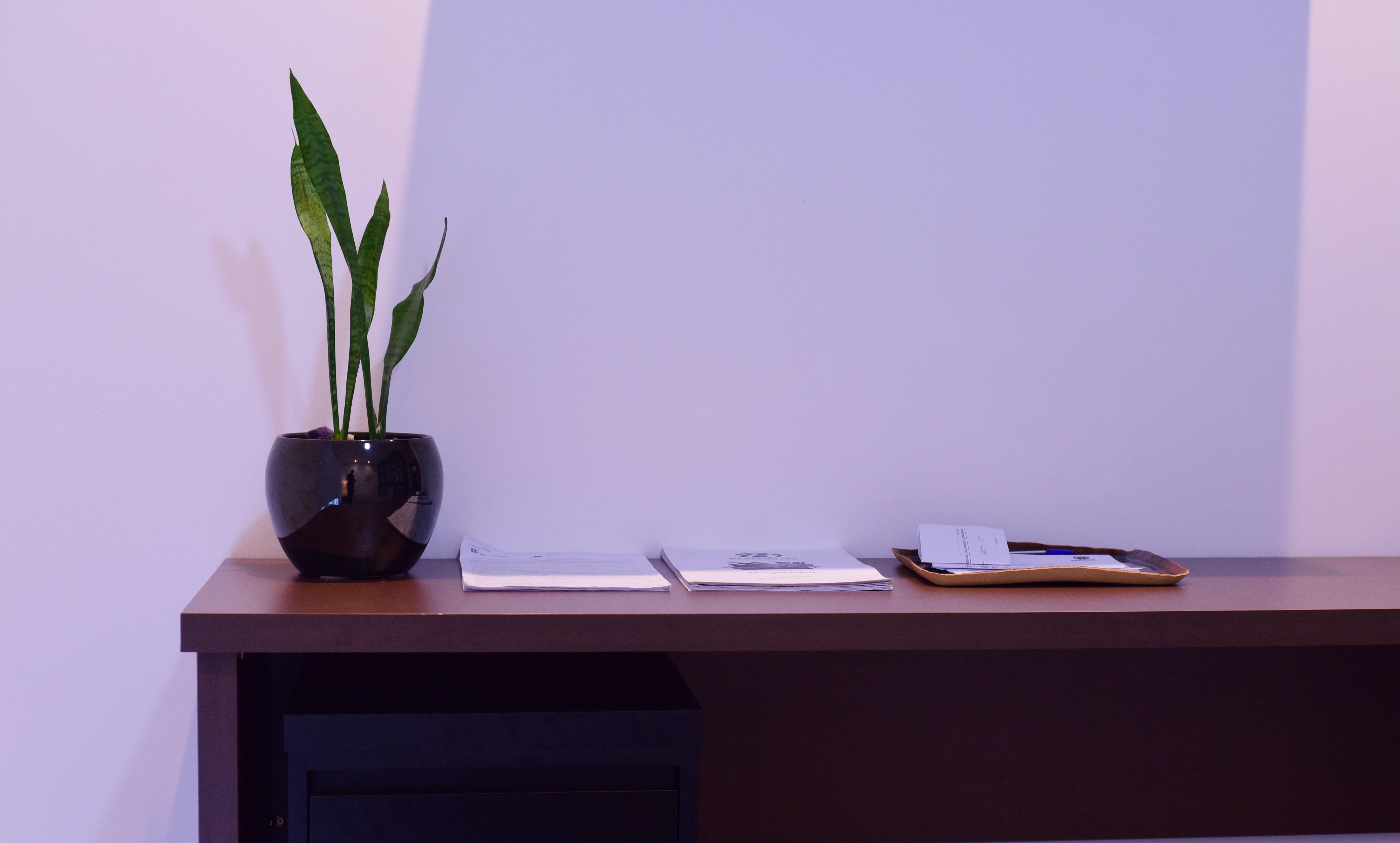 Projeto de design para reforma de apartamento moderno em Curitiba - Estudio Murilo Zadulski Interiores 15